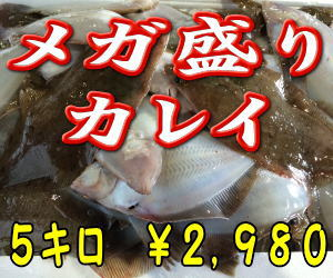 魚通販お得