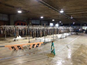 村上鮭販売イベント