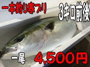 一本釣り寒ブリ3キロ
