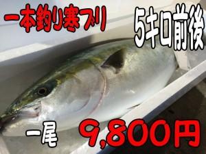 一本釣り寒ブリ5キロ