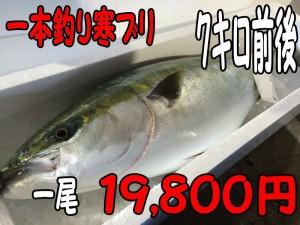 一本釣り寒ブリ7キロ