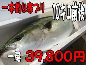 一本釣り寒ブリ10キロ
