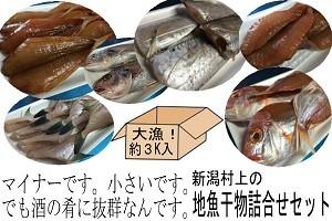 未利用魚活用日本海