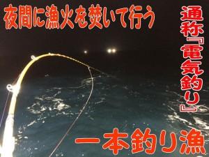 寒ブリ一本釣り漁