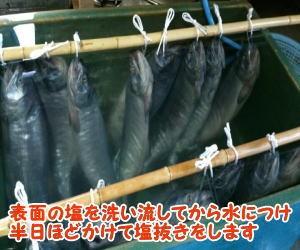 塩引き鮭作り方通販