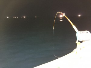 日本海電気釣り漁