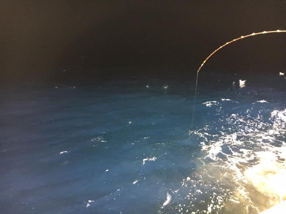 漁火遊漁船