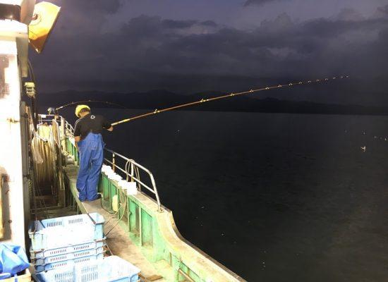 秋の電気釣り漁