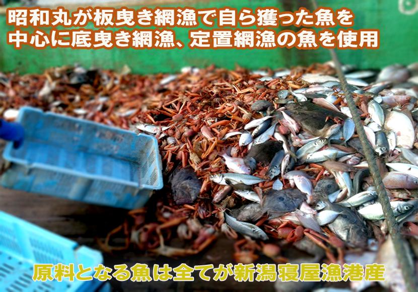 原材料も自ら日本海で調達する安全安心に徹底した商品作り