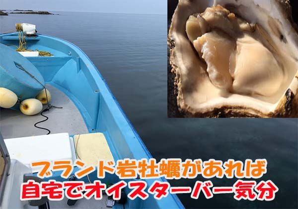産直天然岩牡蠣でオイスターバー気分