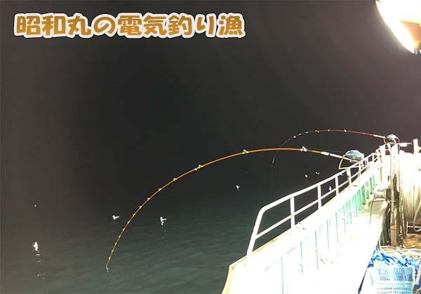 昭和丸の秋の電気釣り漁