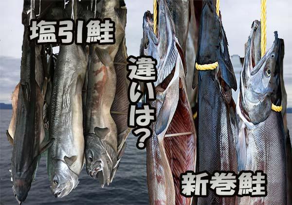 塩引き鮭と新巻鮭の違いは何か