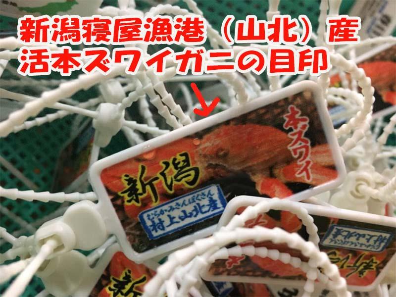 新潟寝屋漁港(山北)産活本ズワイガニブランドタグ