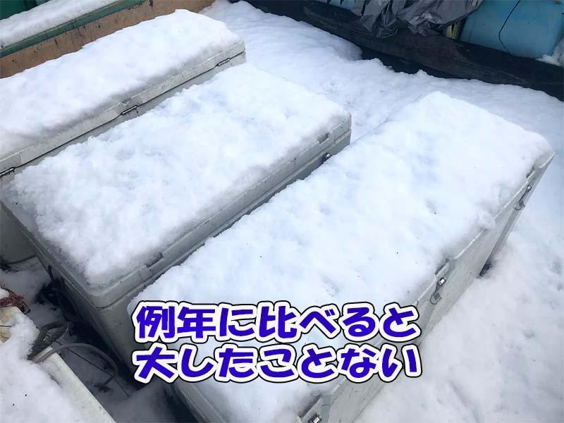 漁船のイケス(クーラーボックス)の積雪