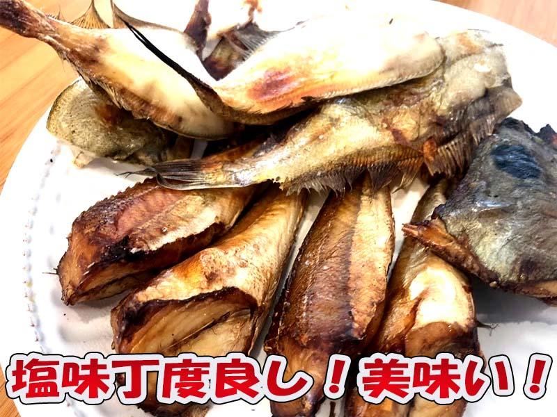日本海の地魚干物を焼きたて試食