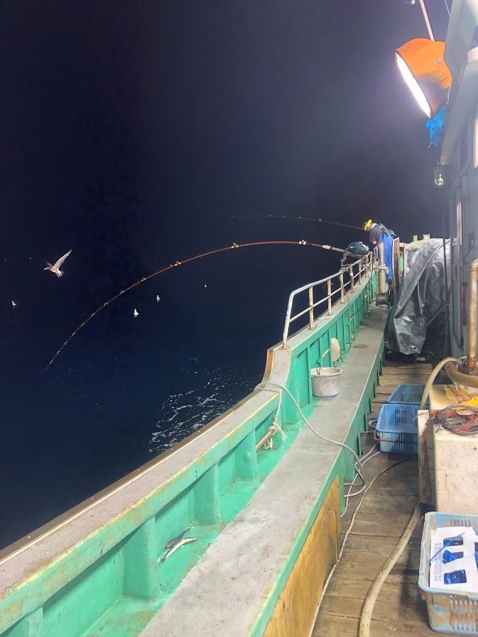 電気釣り漁の様子