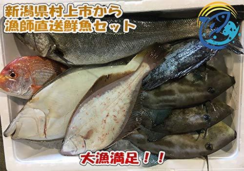 漁師直送昭和丸の鮮魚セット
