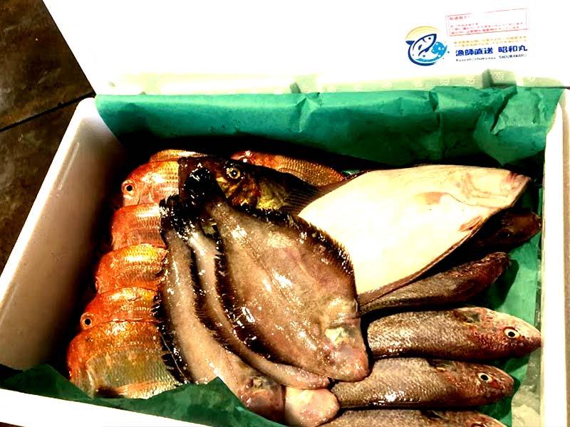 キダイ、ヒラメ、クロカレイ、イシモチ、マトウダイが入った鮮魚セット