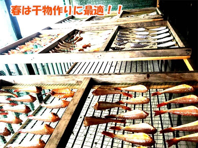 漁師自家製干物の製造過程