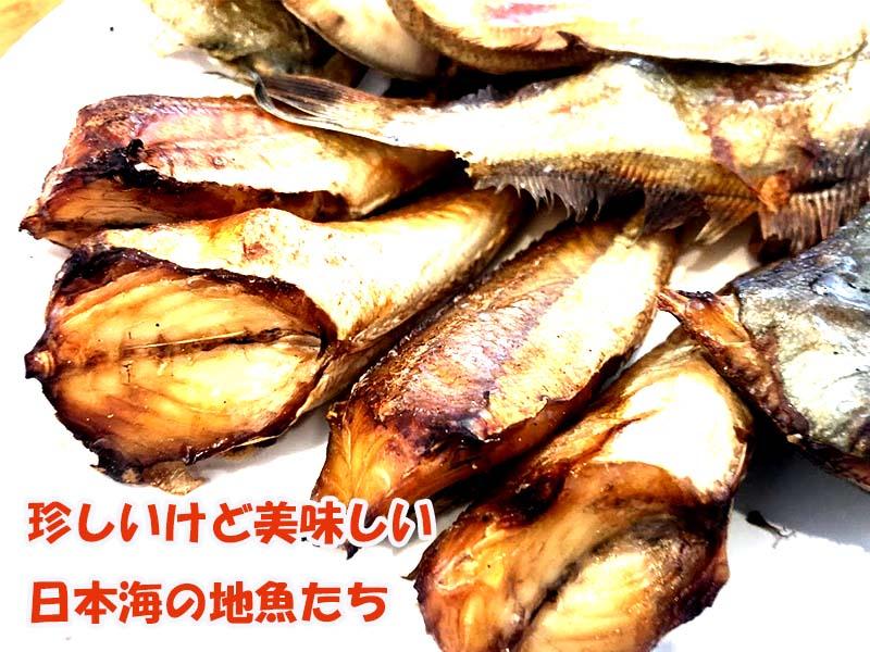 珍しいけど美味しい日本海の地魚