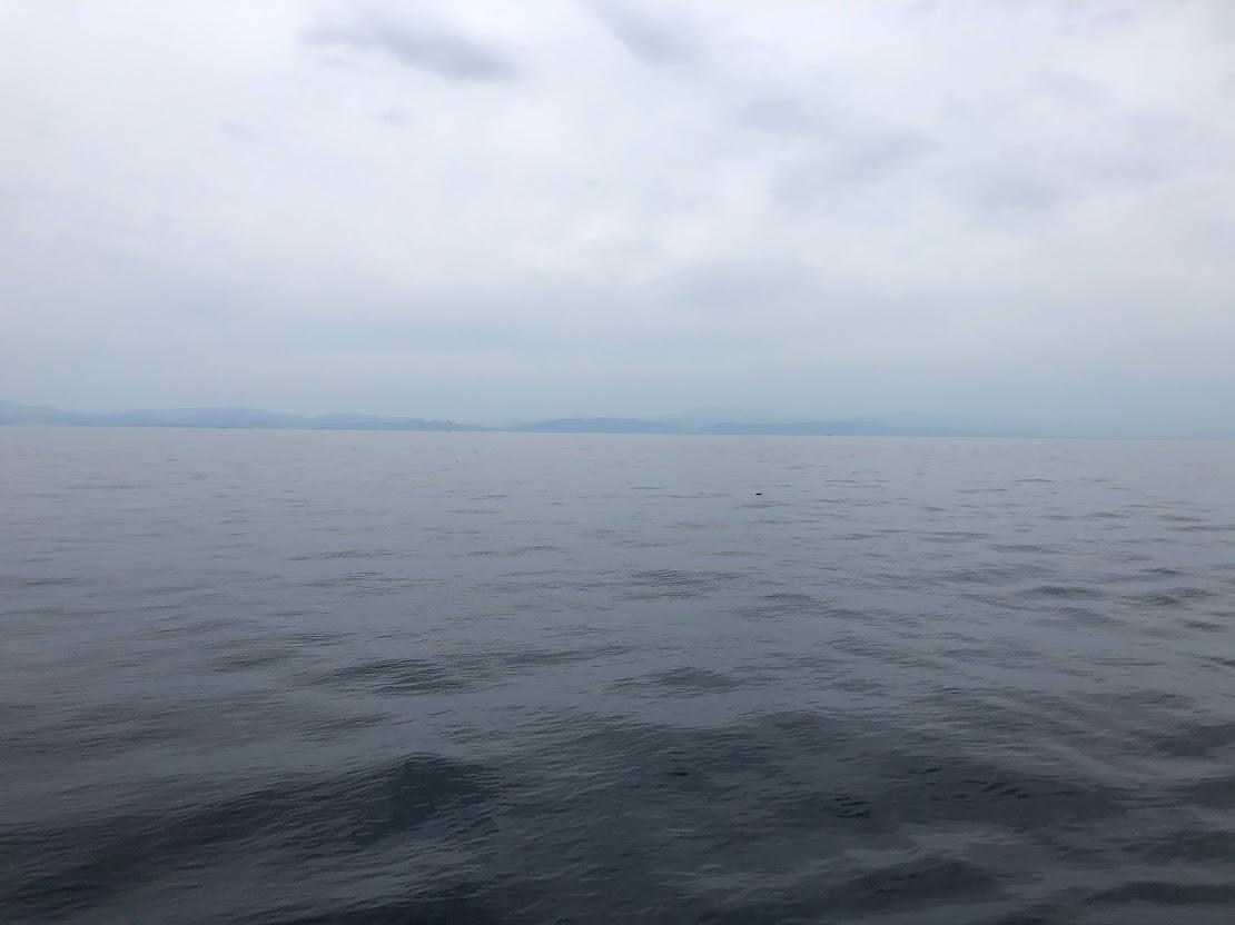 ベタ凪の日本海