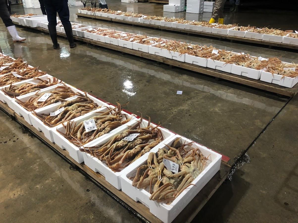 新潟県村上市寝屋漁港のカニがセリに並ぶ